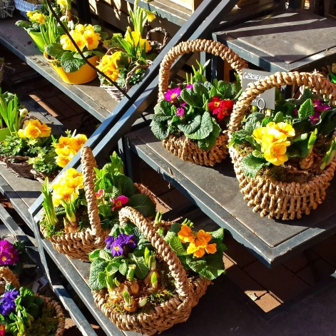 Spring flowers in baskets make me smile.