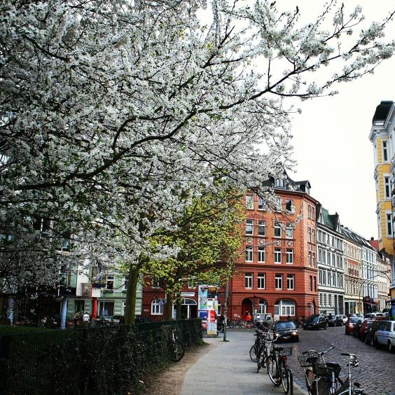Ottensen, Hamburg, Germany Gus and Ollie