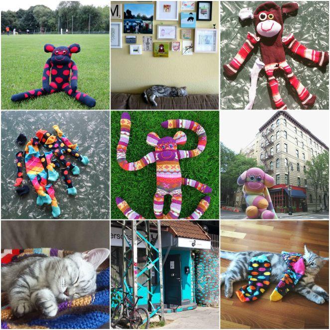 Instagram, round up, july, hamburg, germany, gus and ollie, sock monkey, sock game, photography, socks, cat, kitten, british shorthair, expat, travel, abrouad, new york.